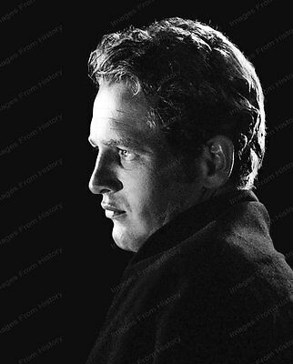 8x10 Print Handsome Paul Newman Portrait #PN292