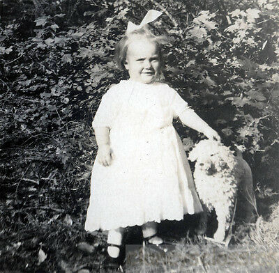 Little Girl Martha Virginia Tomlinson Posing with her little Toy Steiff Dog RPPC