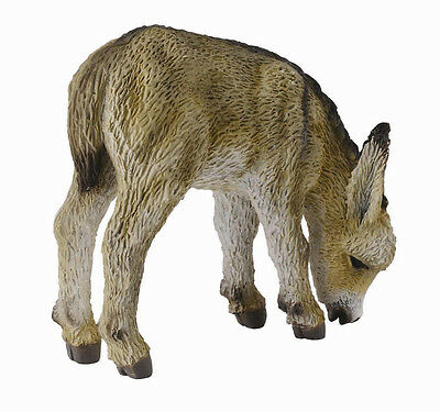 FREE SHIPPING | CollectA 88408 Grazing Donkey Burro Longear Toy - New in Package