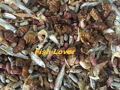 Premium Quality Turtle/Terrapin Food Mix Feed~Dried Shrimp,Fish,Silkworm,Pellets