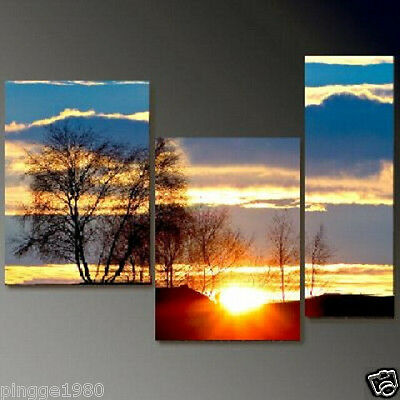 Modern Abstract on Canvas decorative Oil Painting  (NO frame)P049