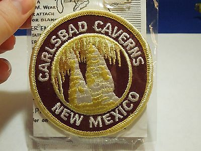 Vintage Trailblazer Carlsbad Caverns New Mexico Embroidered Iron On Patch