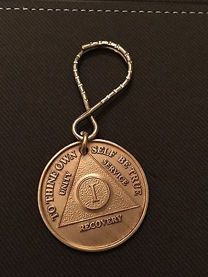 AA Alcoholics Anonymous 1 Year Medallion Chip Key Chain Keytag Keychain Tag