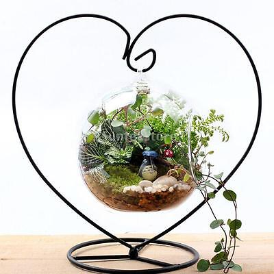 Hanging Glass Flowers Plant Vase Terrarium Container + Heart-shaped Metal Stand