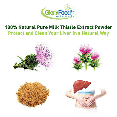 Pure Milk Thistle Powder Extract - 500g - protect & detox liver - Glory Food