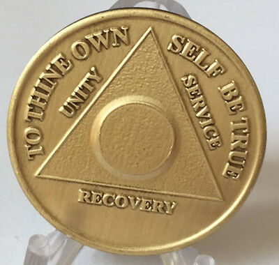 AA Alcoholics Anonymous Plain Front Bronze Medallion Chip Serenity Prayer Coin