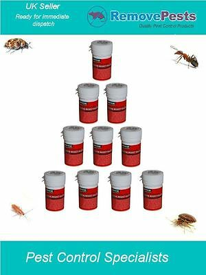 Bed bug killer poison bomb bedbugs moth weevils spiders treatment x 10 PS