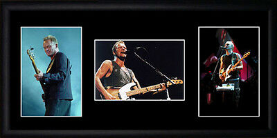 Sting Framed Photographs PB0358