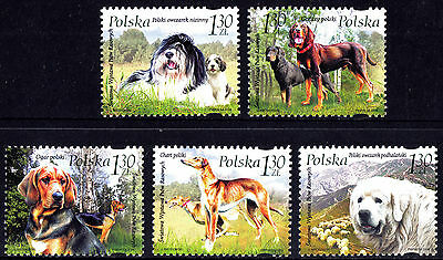 Poland 2006 World Dog Show 2006, Complete Set of Stamps, MNH