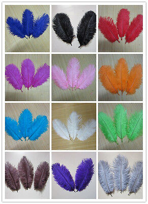 Wholesale! 10-100 pieces of natural ostrich feather 6-8 inch 13 color selection