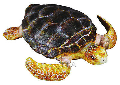 FREE SHIPPING | CollectA 88094 Loggerhead Turtle Toy Reptile - New in Package