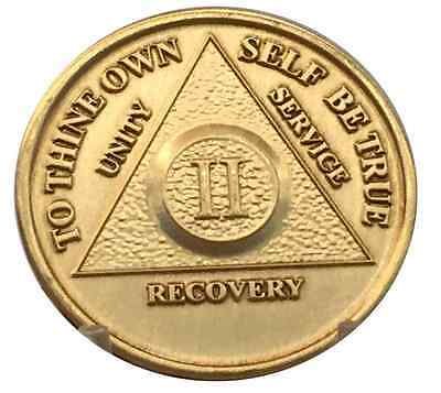 2 Year AA Coin Medallion Alcoholics Anonymous Serenity Prayer Chip Two Bronze