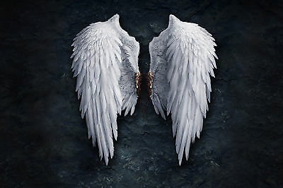 Angel Wings Bird White Feather WALL ART CANVAS FRAMED OR POSTER PRINT