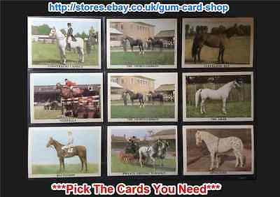 Anglo Confectionery - The Horse 1966 (G) ***Pick The Cards You Need***