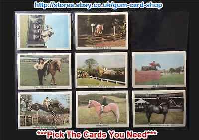 Anglo-American - The Horse 1966 (Cards 1-36) (G) ***Pick The Cards You Need***