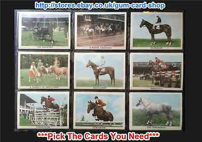 ☆ Anglo-American - The Horse 1966 (Cards 37 - 66) (G) *Pick the Cards You Need*