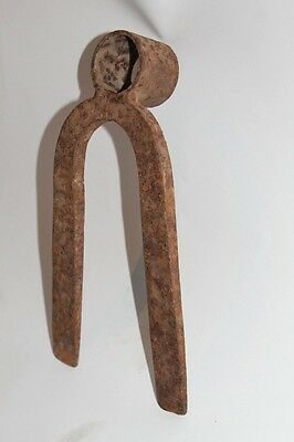 Antique Garden Tool Digging Turnip 19 Century