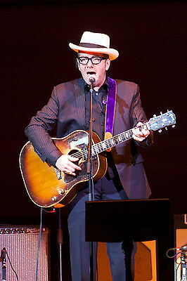 Elvis Costello 8X10 Glossy Photo Picture