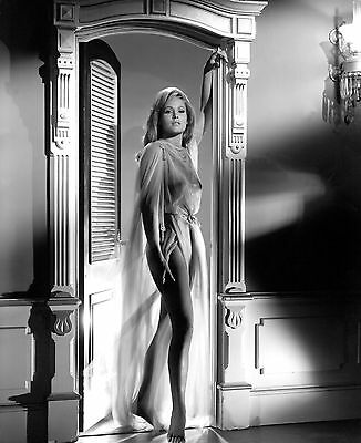 Ursula Andress 8X10 Glossy Photo Picture Image #3