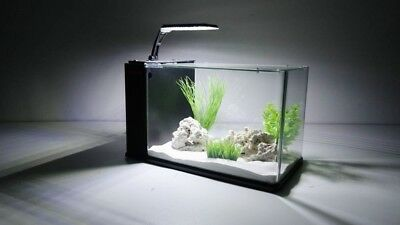 Aqua Orion 40 en noir Mini-Aquarium Nano Complet +LED & CLAIR DE LUNE