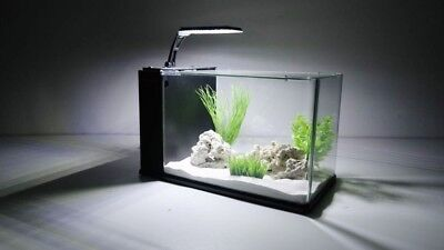 eau Orion 40 en noir mini-aquarium Nano complet + LED & CLAIR DE LUNE