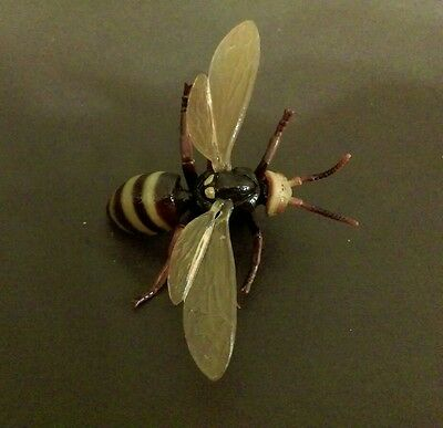 RARE Rement Asian Giant Wasp Hornet Bee Realistic Insect Bug Magnet PVC Figure