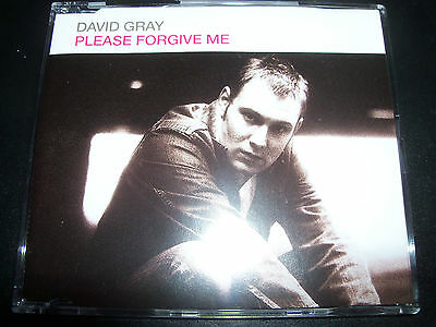 David Gray Please Forgive Me Rare Australian Enhanced CD – Like New