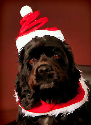 American Cocker Spaniel Dog (Black) Christmas Greeting Cards (PACK OF 5)