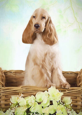English Cocker Spaniel Dog (Orange Roan) Note Cards (PACK OF 5)