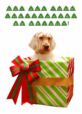 English Setter Dog Christmas Greeting Cards (PACK OF 5)