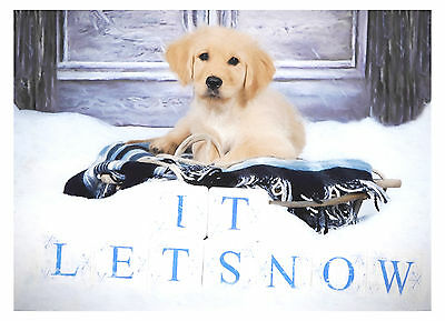 Golden Retriever Puppy Dog Christmas Greeting Cards (PACK OF 5)