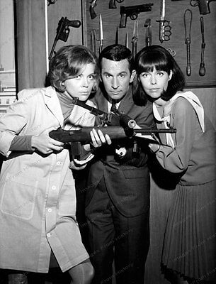 8x10 Print Don Adams Barbara Feldon Barbara Bain Get Smart 1966 #BF992