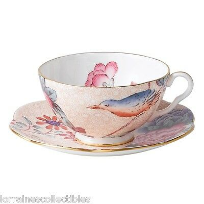 NEW IN THE BOX Wedgwood Harlequin Cuckoo Tea Story Teacup and Saucer PEACH