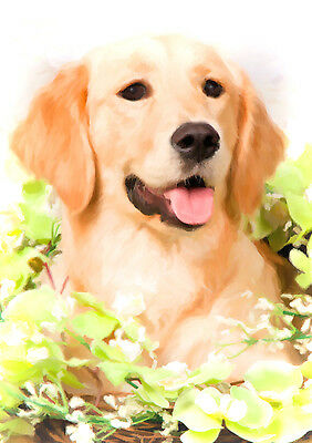 Golden Retriever Dog Note Cards (PACK OF 5)