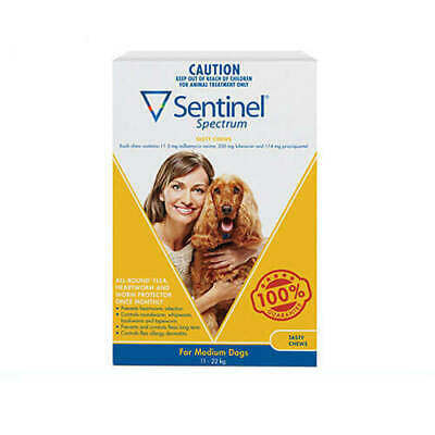 Sentinel Spectrum Yellow 6 pack Chews for medium dogs 11-22kg
