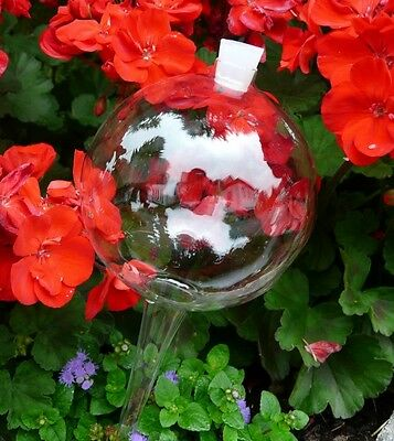 Thirst Balls with siliconstopfen 8 cm watering balls Watering Globes