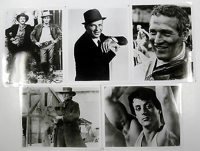 "HOLLYWOOD HUNKS Lot Of (5) B&W 8 x 10"" PHOTOS Sylvester STALLONE Redford NEWMAN"