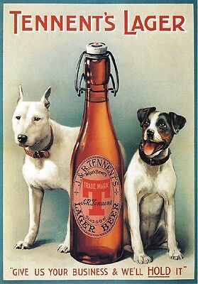 """Targa Vintage """"1909 Tennent's Lager Beer"""" Pubblicita',Advertising, Poster, Plate"""