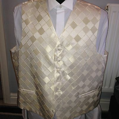 Piscador Waistcoat, Ivory Square, Various Sizes, Wedding / Formal Wear (003)