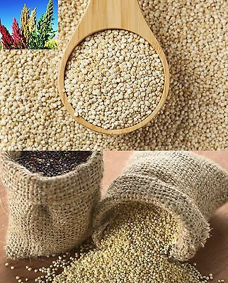 QUINOA SEEDS SUPERFOOD White Premium Gluten Free 1kg only £6.99 UK Delivery