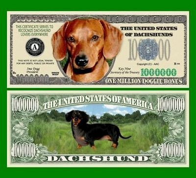 25 Factory Fresh Novelty Dachshund Dog Million Dollar Bills