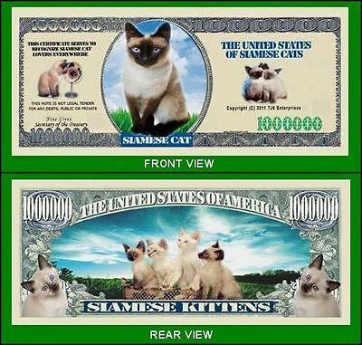 25 Factory Fresh Novelty Siamese Cat Million Dollar Bills