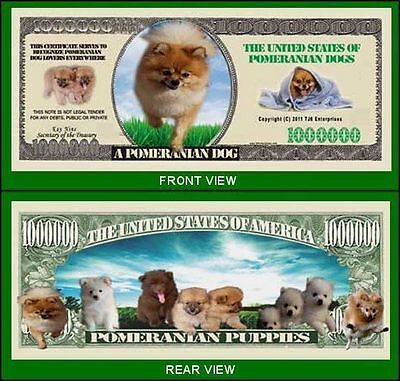 5 Factory Fresh Novelty Pomeranian Dog Million Dollar Bills