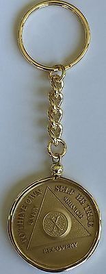 AA Medallion Holder Sobriety Chip Keychain 18k Gold Plated Coin Token Key Chain