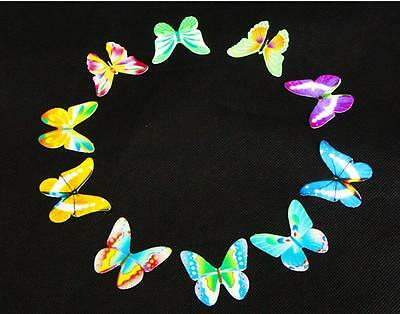 Butterflies Prime Wedding Birthday Edible Rice Wafer Paper Cupcake Cake Toppers