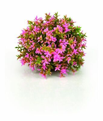 Reef One Biorb Pink Topiary Ball Plant Fish Tank Decoration Biube Flow Halo Life