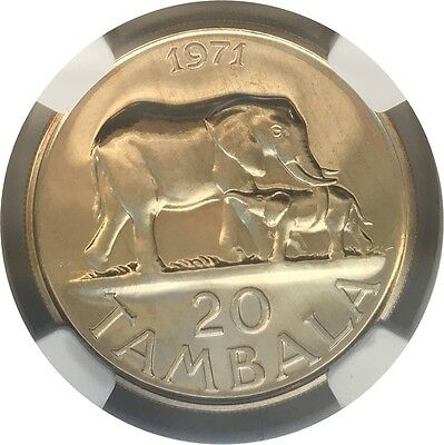 "1971 Malawi 20 Tambala KM# 11.1 ""Elephant and Calf""  NGC MS-66 - Shared Finest!"