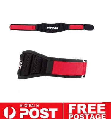 Sting Sports NEO 4 inch Weight Lifting Belt MEDIUM | Crossfit Powerlifting