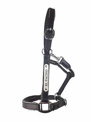 Leather Halter - Silver Fittings with Engraved Horse Nameplate