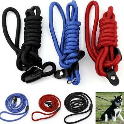 Adjustable Pet Dog Nylon Rope Training Leash Slip Lead Strap Traction Collar LD